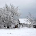 Zimní dekorace