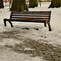 osamocená v mrazivém dni