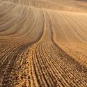 Ročovské vlny