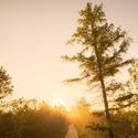 Východ slunce na Chalupské slati