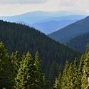 Údolí Divoké Desné