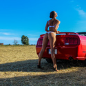 Ford Mustang - vol.2