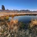 podzimní ráno na šumavských pláních