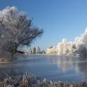 rybník ve Zvoli