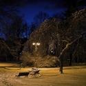 Večerní park