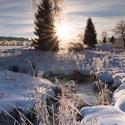 Zimní Brdy