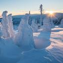 Šumavská zima