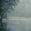 Ranní laguna