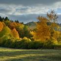 Zářivý podzim