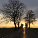 Cesta svetla
