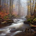 ...podzimní potok Prunéřovský