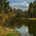 Klid u rybníka