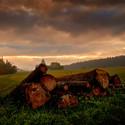 Za rozbřesku u dřevěných klád