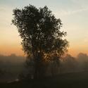 Jedno podzimní ráno