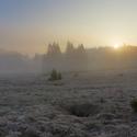 v údolí Vltavy u Borových Lad