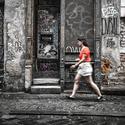 Olomoucké dveře