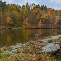 Čížovský rybník