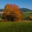 Hřejivý podzim