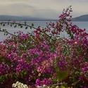 Po dešti vykukuje sluníčko nad Galilejským jezerem v Izraeli