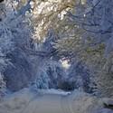 V sněhovém tunelu