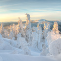 v Zajetí sněhu