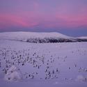 Krkonoše po západu slunce v zimě.