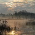 Ráno u rybníku