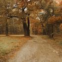 Podzim u dubáků