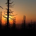 Slunce při západu dosvlova čarovalo...