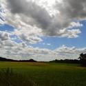 Louky a pole před sklizní