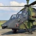DNY NATO (TIGER)