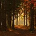 podzimní svícení