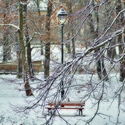 Zasněžená lavička