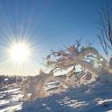zima na Pradědu