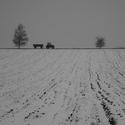 ...ponurá zima zemědělce...