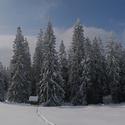 Rozprávková zima II.