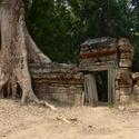 Střípek z Angkoru
