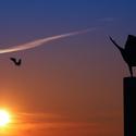 ...sunrise in ghosttown...