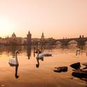 Východ slunce u Karlova mostu