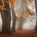podzim Krušnohorský