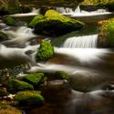 Hamerský potok......