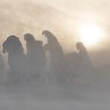 Bubáci - sněžná bouře