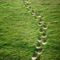 Stopy v trávě