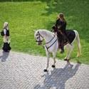 Jezdec a dívka