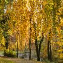 Podzim na Červeném Hrádku