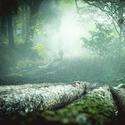 Lesní duchové