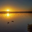 probouzeni na jezere