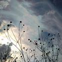 Rozbouřené nebe