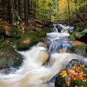 Podzim v Jedlovém dole
