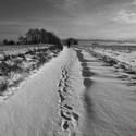 Stopy ve sněhu...